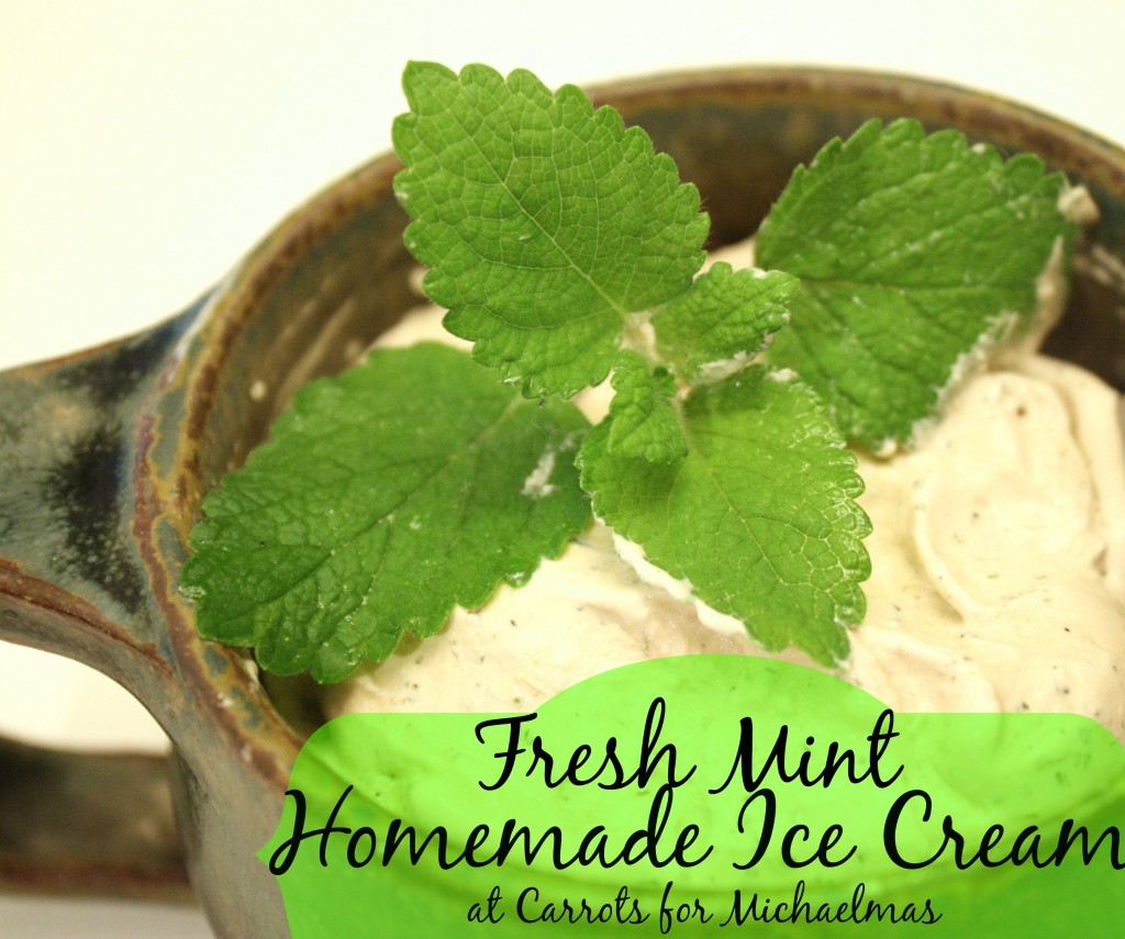 Fresh Mint Homemade Ice Cream