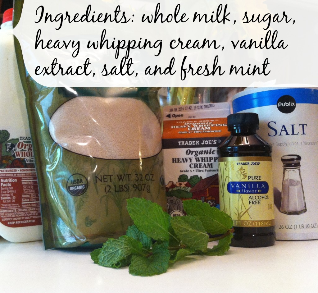 Fresh Mint Homemade Ice Cream Ingredients.jpg