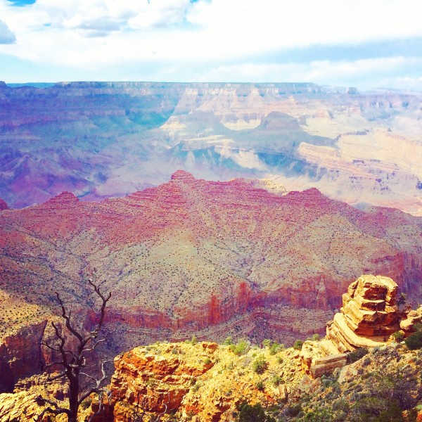 Why Essential Oils Are Like the Grand Canyon