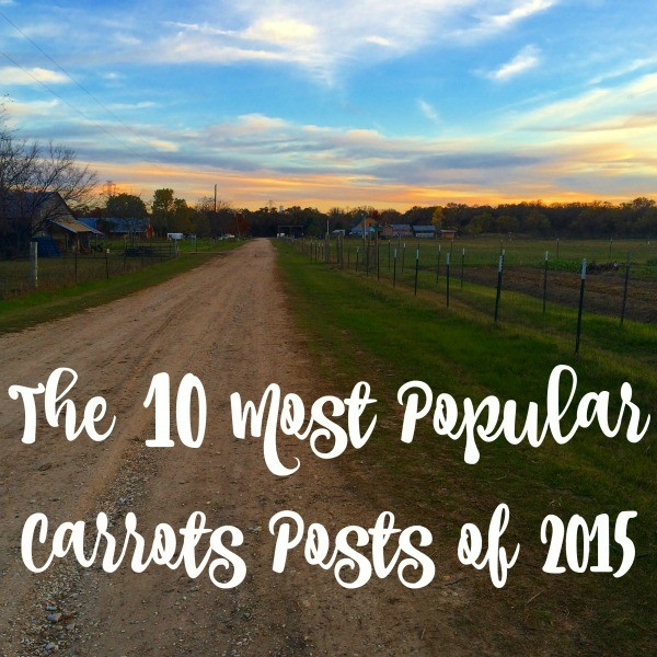 The 10 Most Popular Carrots Posts of 2015!
