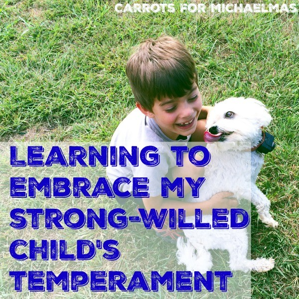 Learning to Embrace My Strong-Willed Child's Temperament